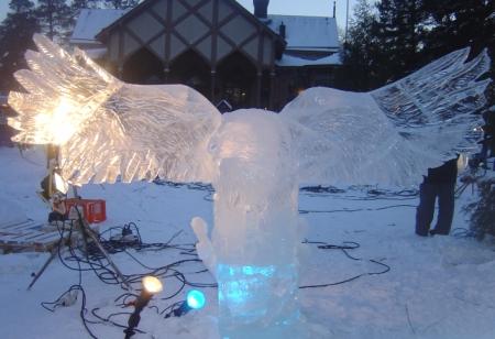 aguia gelo